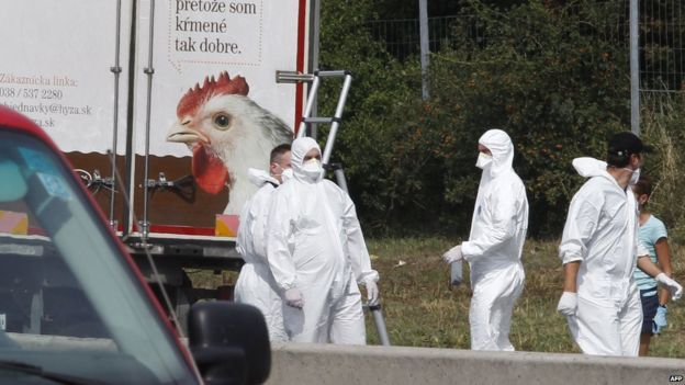 migrantes 150828034158_forenses