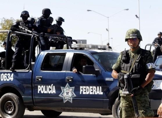 Policía Federal Puntoporpunto