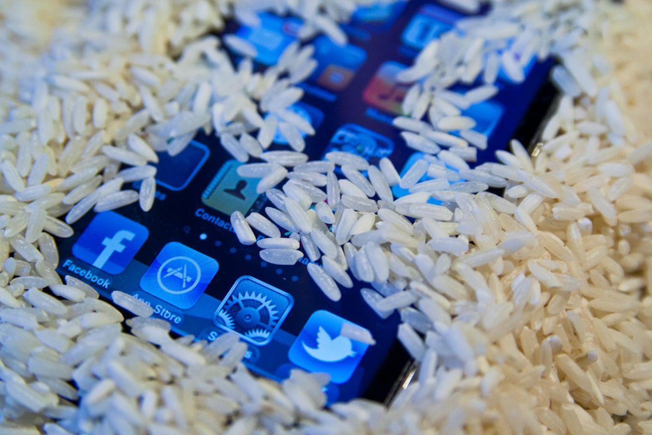 arroz telefono